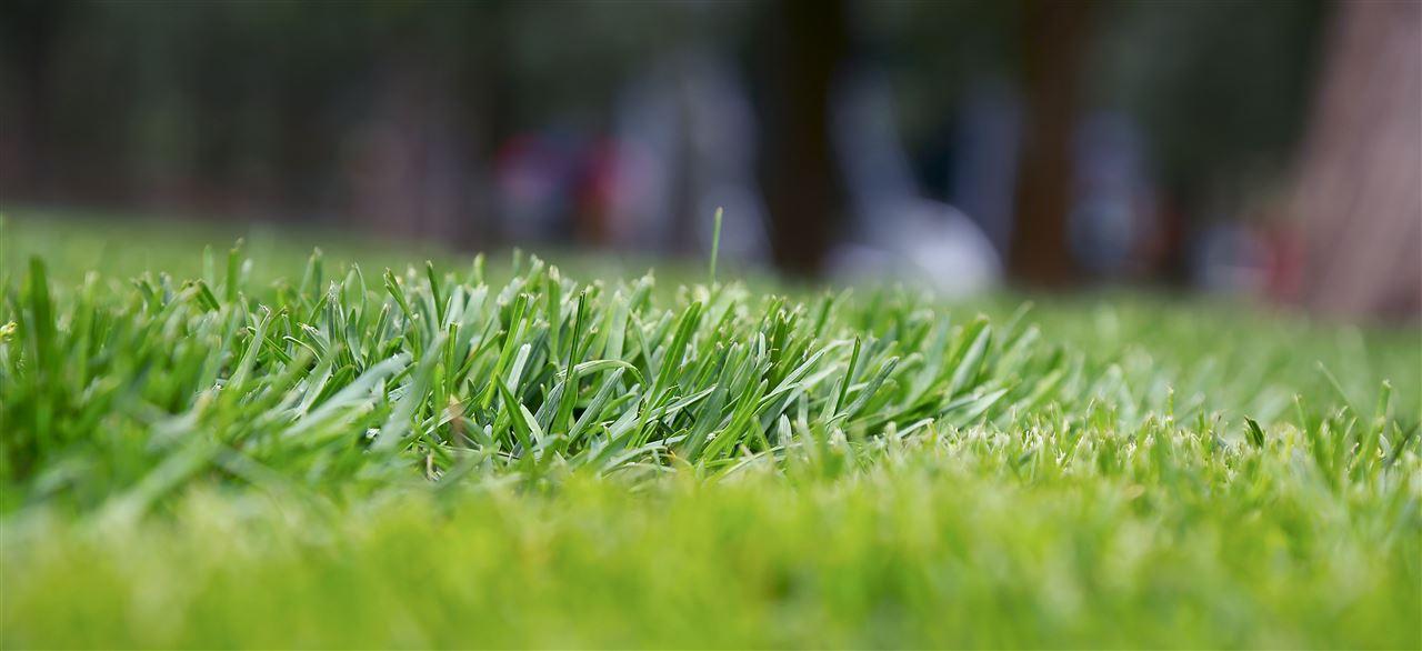 多家中标襄阳市生态环境局土壤监测项目采购
