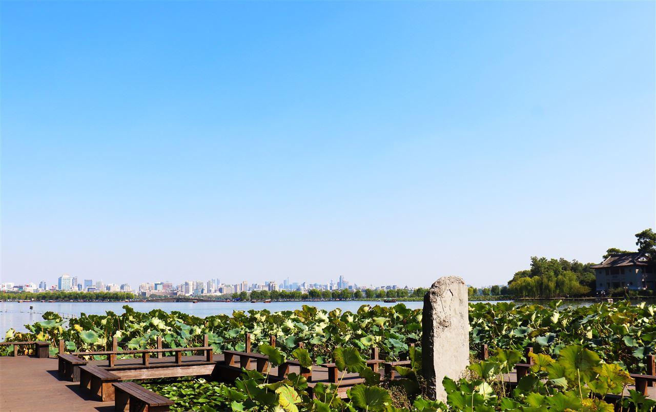 971万 黑龙江农科院公布一批仪器中标信息