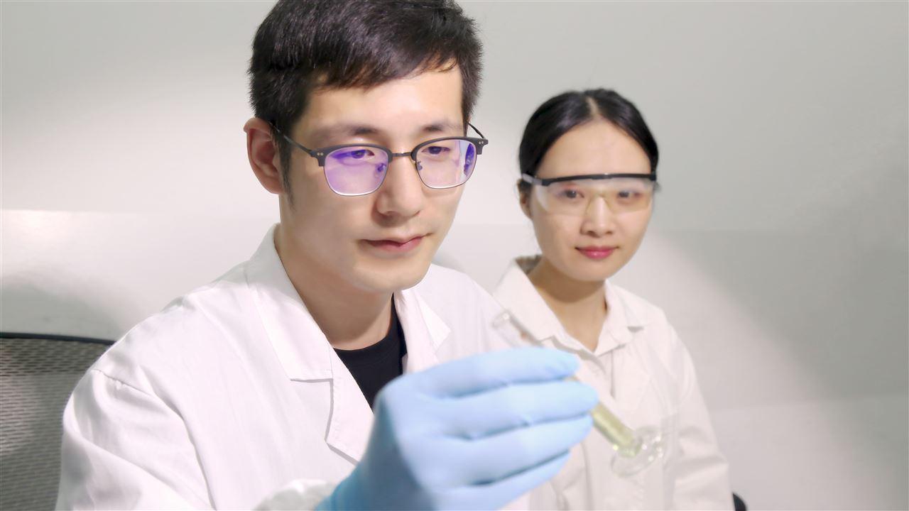 北师大珠海校区采购X射线衍射仪
